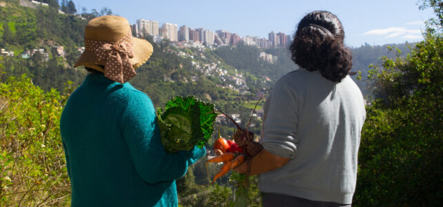 The Transformative Impact of Quito's Resilient Food Security Program
