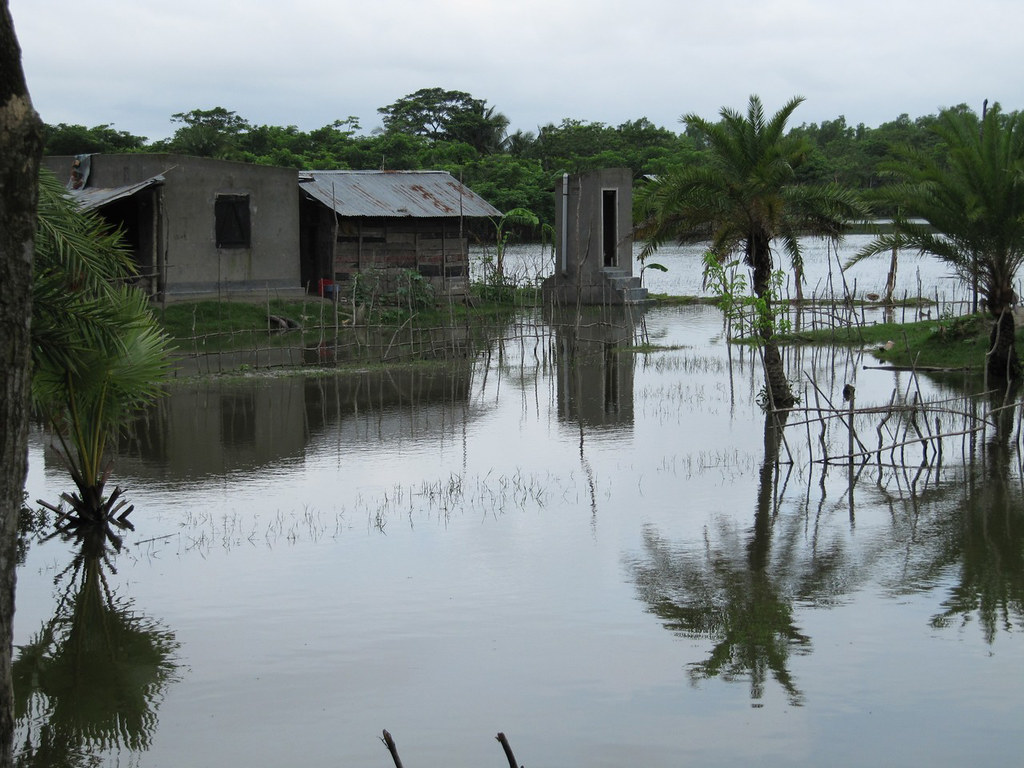 behind a flooded field, dotted with palm trees, a cement house and a cement outhouse sit just above the floodwaters